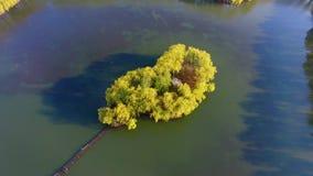 美丽的海岛和美妙的自然的鸟瞰图 股票录像