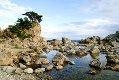 美丽的海岸岩石海运 免版税图库摄影