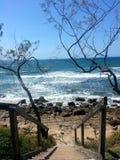美丽的海岸 库存图片