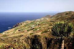 美丽的海岸la palma 库存照片