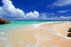 美丽的海滩在冲绳岛 免版税库存照片
