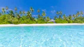 美丽的海滩横幅 热带本质的场面 棕榈树和蓝天 暑假和假期概念 免版税库存图片