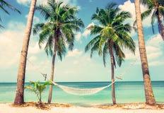 美丽的海滩 在两棵棕榈树之间的吊床在海滩 v 图库摄影