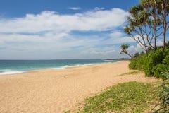 美丽的海滩 好的热带海滩看法与棕榈的 免版税库存照片