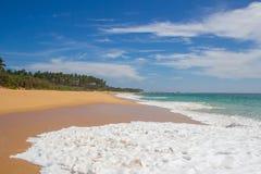美丽的海滩 好的热带海滩看法与棕榈的 免版税库存图片