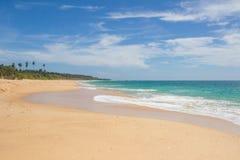 美丽的海滩 好的热带海滩看法与棕榈的 图库摄影
