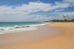 美丽的海滩 好的热带海滩看法与棕榈的 免版税图库摄影