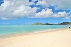 美丽的海滩在加勒比有一朵蓝天背景和白色云彩 免版税库存图片