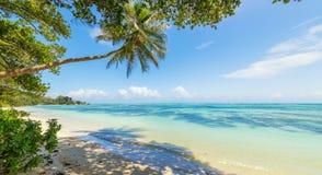 美丽的海滩塞舌尔群岛,海岛拉迪格岛 图库摄影