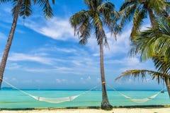 美丽的海滩惊人的看法与棕榈树、吊床和tr的 库存图片