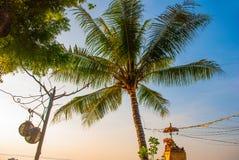 美丽的海滩用一个咖啡馆在萨努尔有在巴厘岛海岛上的地方传统小船棕榈树的在黎明 印度尼西亚 免版税库存图片