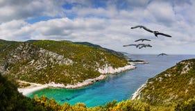 美丽的海滩,顶视图 免版税库存图片