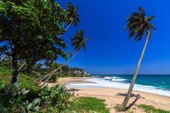 美丽的海滩, Tangalle,斯里兰卡 库存照片