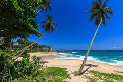 美丽的海滩, Tangalle,斯里兰卡 库存图片