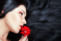 美丽的深色的女孩。 健康长的头发 库存图片
