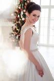 美丽的深色的新娘画象有典雅的穿长的豪华婚礼礼服的发型和构成的 图库摄影