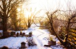 冬景花园 库存照片