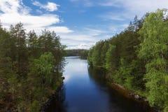 美丽的湖和森林夏天视图  免版税库存图片