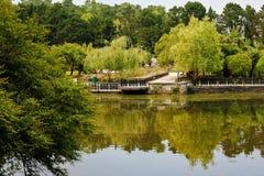 美丽的湖在一个植物园里 库存图片