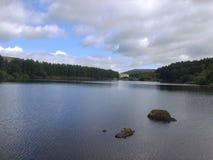 美丽的湖在夏天 库存照片