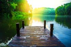 美丽的湖在杉木森林场面自然背景中 免版税库存图片