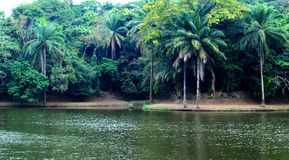美丽的湖在非洲 库存图片