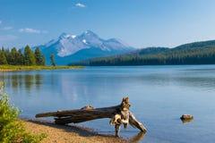 美丽的湖山 免版税库存照片