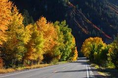 美丽的湖山 免版税库存图片
