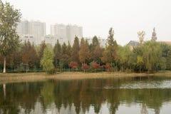 美丽的湖 库存图片