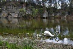 美丽的湖Krcak 库存图片