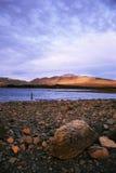 美丽的湖tekapo 免版税图库摄影