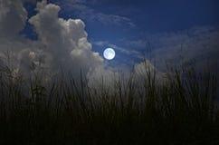 美丽的满月和白色云彩夜 库存照片