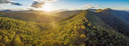 美丽的澳大利亚阿尔卑斯空中全景日落的 树木丛生的小山和农村路 库存照片