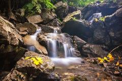 美丽的瀑布在喀尔巴阡山脉 免版税库存图片
