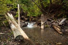 美丽的瀑布在喀尔巴阡山脉 免版税库存照片