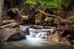 美丽的瀑布在喀尔巴阡山脉 库存图片