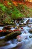 美丽的瀑布在日落的森林里 免版税库存照片