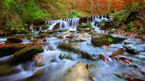 美丽的瀑布在日落的森林里 免版税库存图片