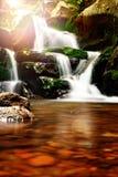 美丽的瀑布在森林里 库存图片