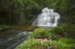 美丽的瀑布在泰国的森林里 库存照片