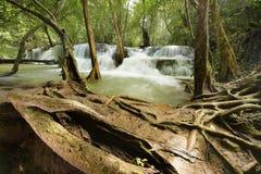 美丽的瀑布在绿色森林里 免版税图库摄影