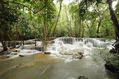美丽的瀑布在绿色森林里 库存图片