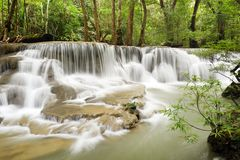 美丽的瀑布在绿色森林里 免版税库存图片