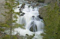 美丽的瀑布在黄石国家公园 免版税图库摄影