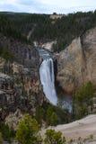 美丽的瀑布在黄石国家公园 免版税库存图片