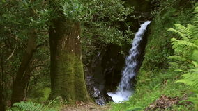 美丽的瀑布在Glendalough 影视素材