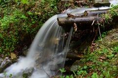 美丽的瀑布用在一条山小河的清楚的水在森林里 免版税图库摄影