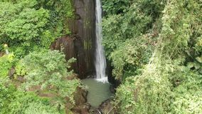 美丽的瀑布鸟瞰图在绿色热带雨林里在巴厘岛 影视素材