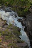 美丽的瀑布 库存图片