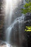 美丽的瀑布 库存照片